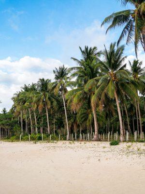 El Nido Palawan Philippines resorts moringa coco luxe luxury best island île nacpan beach